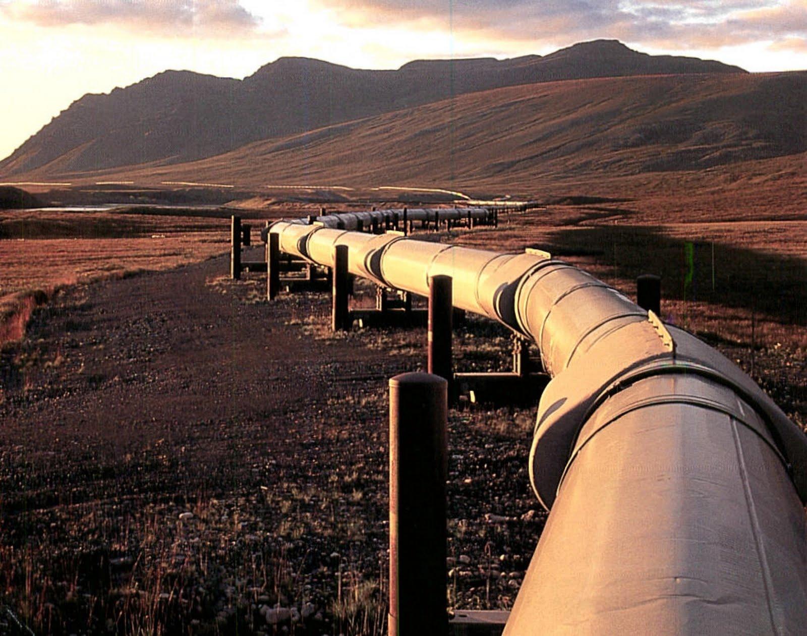 Para el 2019 el incremento de la red de gasoductos será del 66 por ciento con respecto a 2012, con lo que la red alcanzará una longitud de 18 mil 800 kilómetros: PJC
